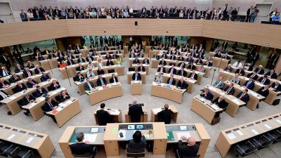 Bea Boehlen,Grüne,Landtagsabgeordnete,Wahlkreiss,33,Petition,Demokratie,