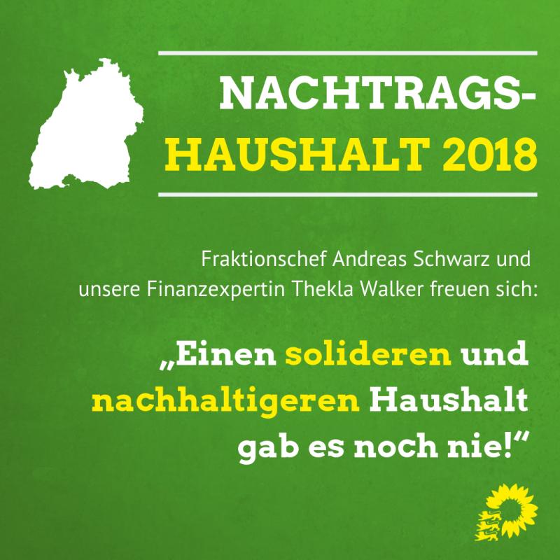 In vier Grafiken werden die Aussagen von Fraktionschef Andreas Schwarz und der Grünen Finanzexpertin Thekla Walter illustriert.